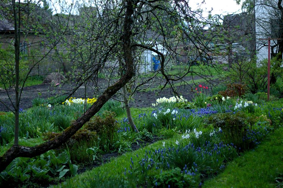 Turi-gardens