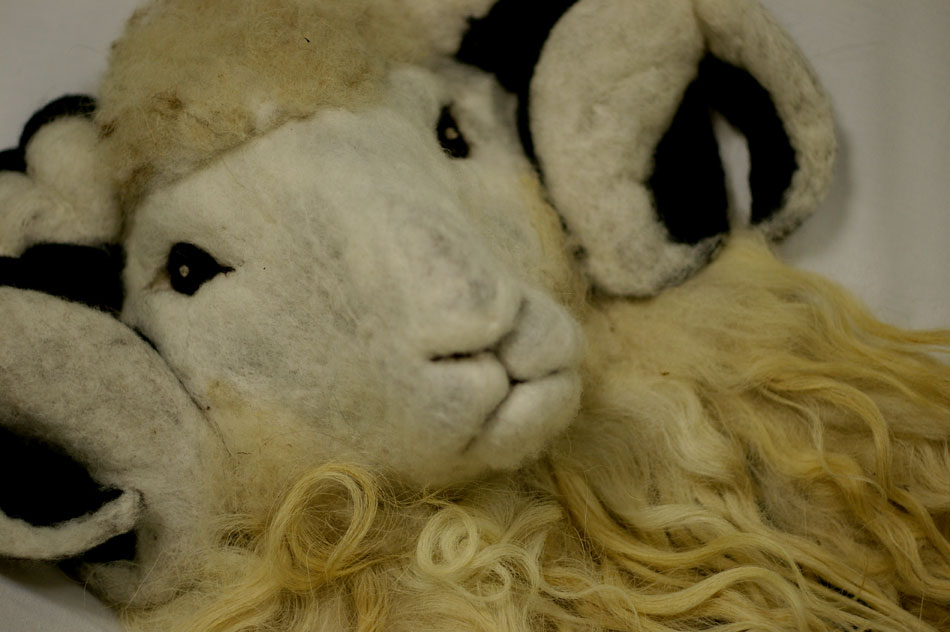 Felted sheep head with fleece, made in felted Faroese sheep wool and displayed at the North Atlantic Native Sheep & Wool Exhibition