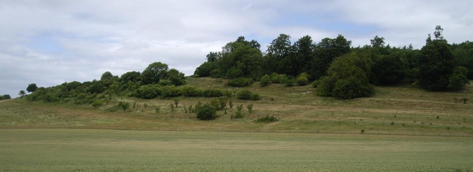 hills-near-Ipsden
